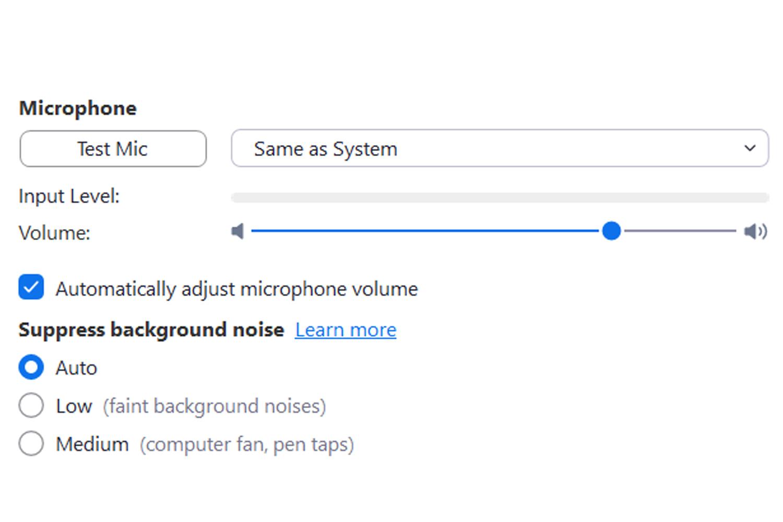 zoom audio voice echoing