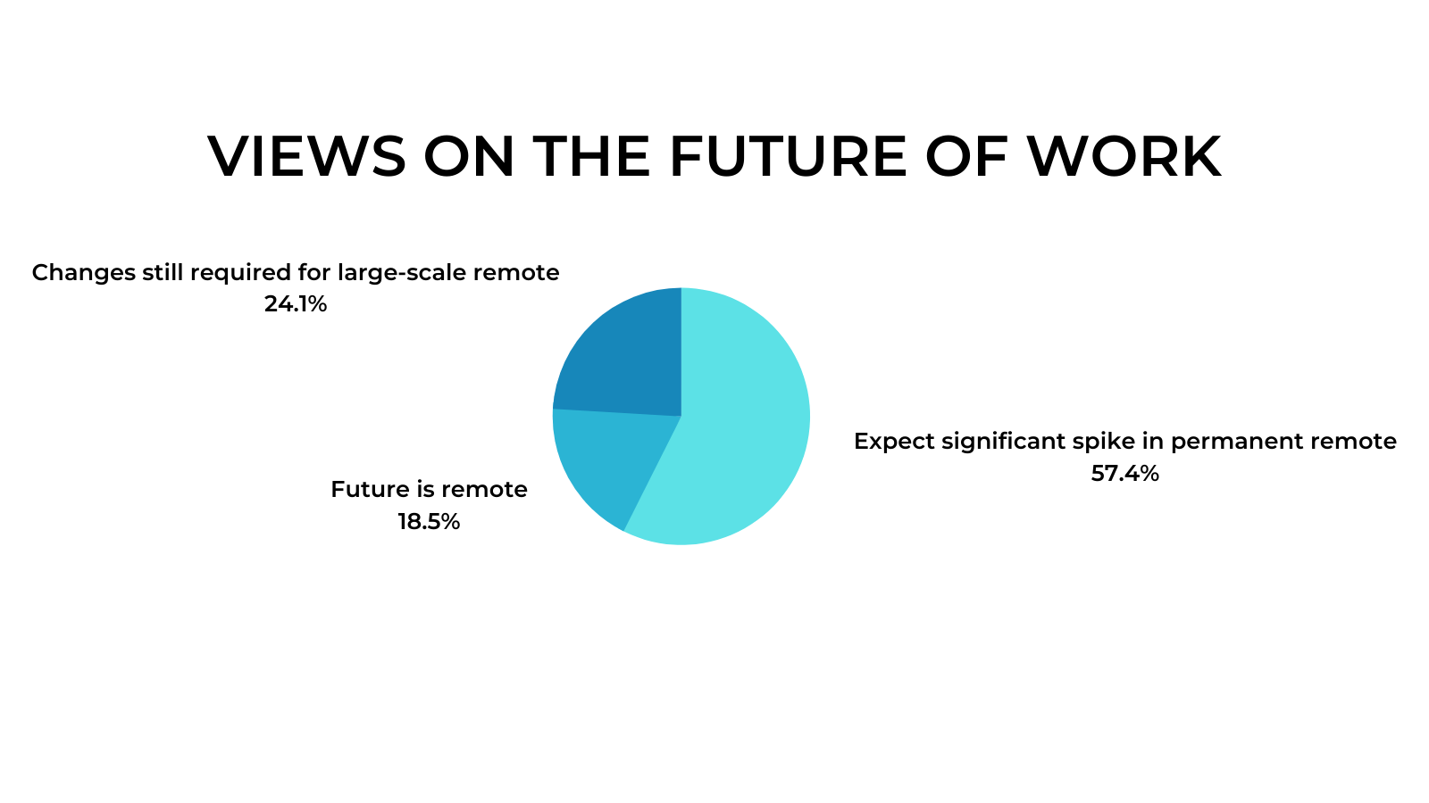 Remote Work Interviews - Future of Work