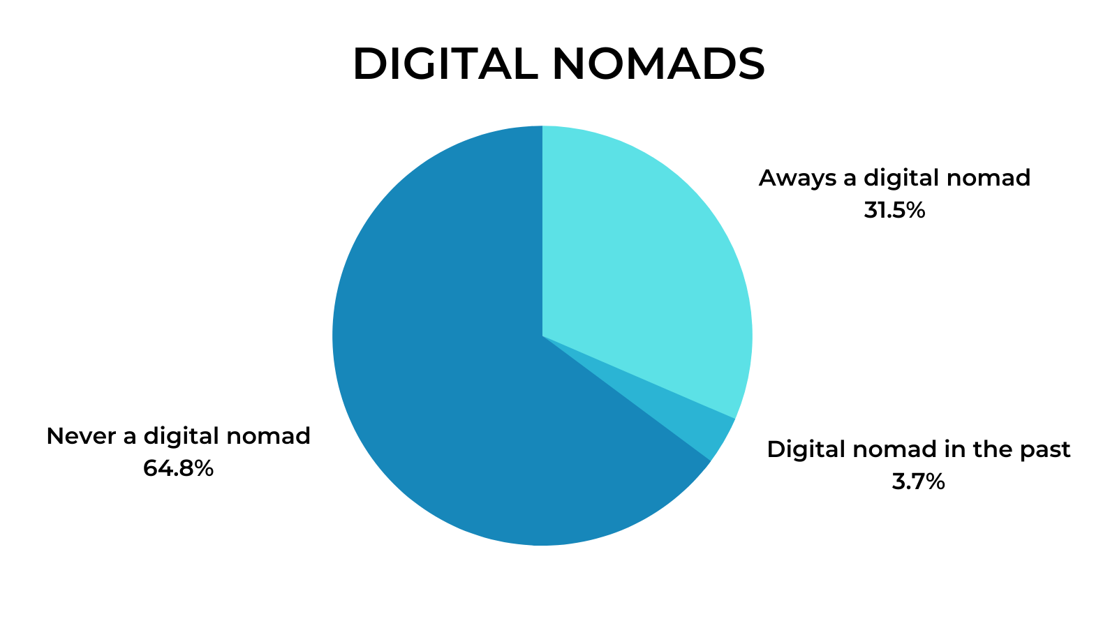 Remote Work Interviews - Digital Nomads